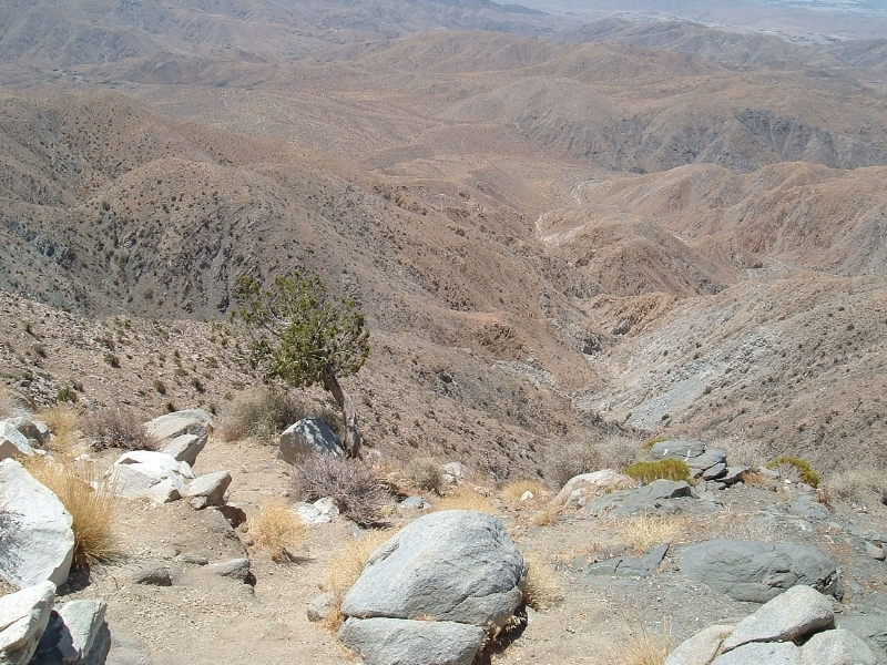 Joshua Tree National Park - Looking out from 'Keys View'