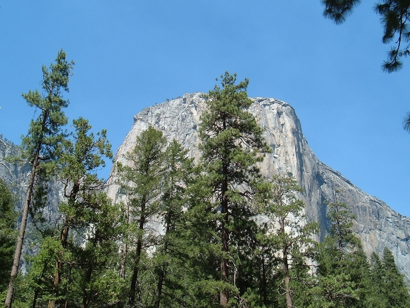 A scenic view of Yosemite Valley